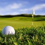 Annual Golf Day Draw
